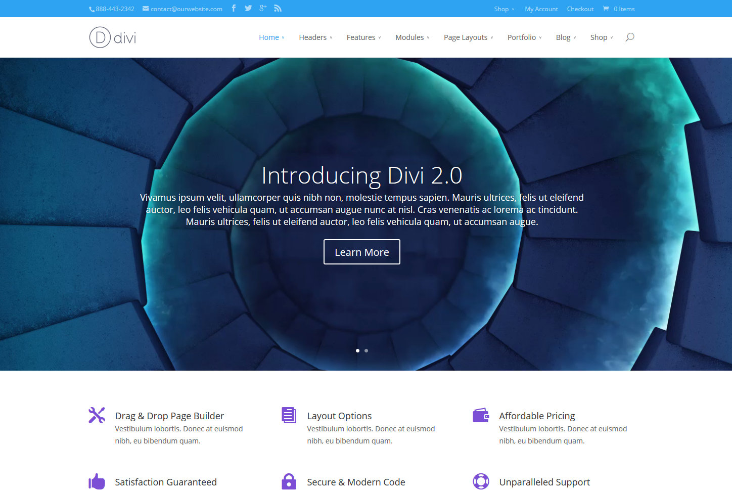 A screenshot of the Divi theme demo page